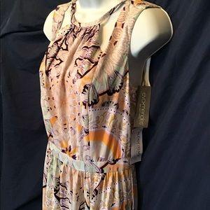 NWT Maxi Dress, Eva Mendes, beautiful dress!